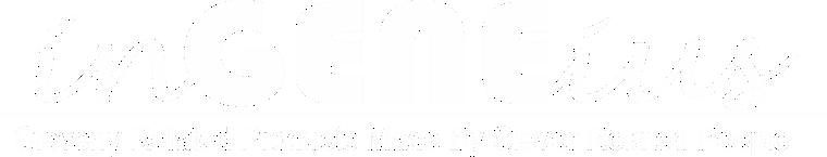 Ingeneius Logo White 2